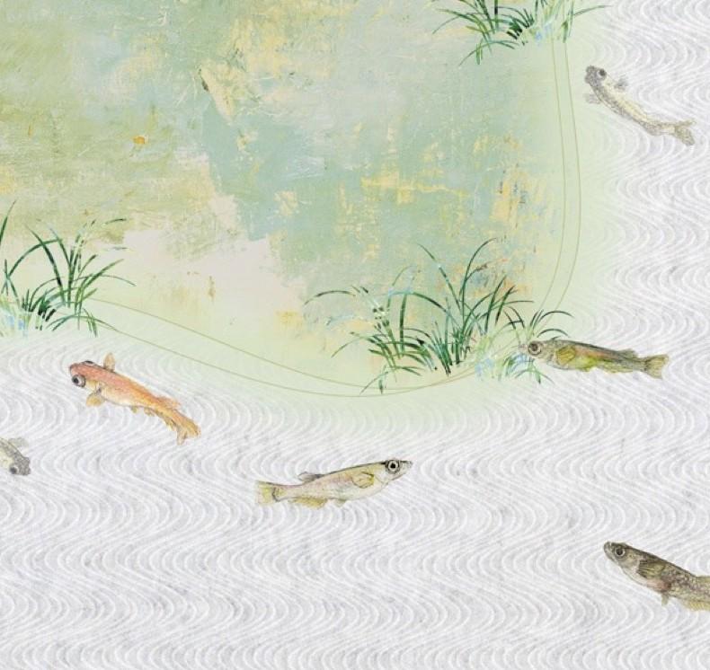 Different varieties of medaka. Artwork by Saisetsu Honda and Nobuko Makihara.