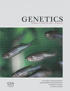 GENETICS zebrafish cover