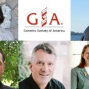 pics of GSA awardees