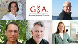 pics of GSA awardees