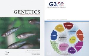 Genetics and G3 journal - GSA blog