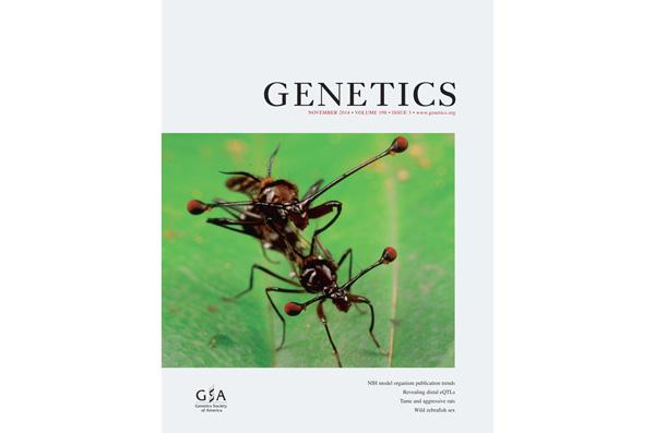 genetics november cover