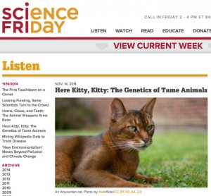 Science Friday story on Heyne et al