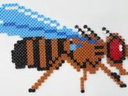 Hama bead fly