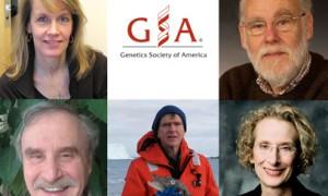 GSA awardees