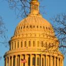 Capitol-448px