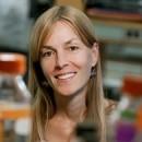 Alison E. Gammie, PhD