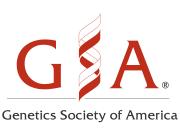 GSA_Logo_Blog_540x540