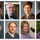 GSA members elected to the 2015 class of AAAS Fellows: (top, l-r) Julie Brill, Gerald Fink, Pamela Geyer, Hannah Klein; (bottom, l-r) Erik Lundquist, Joseph Reese, Beth Sullivan, Roger Wise