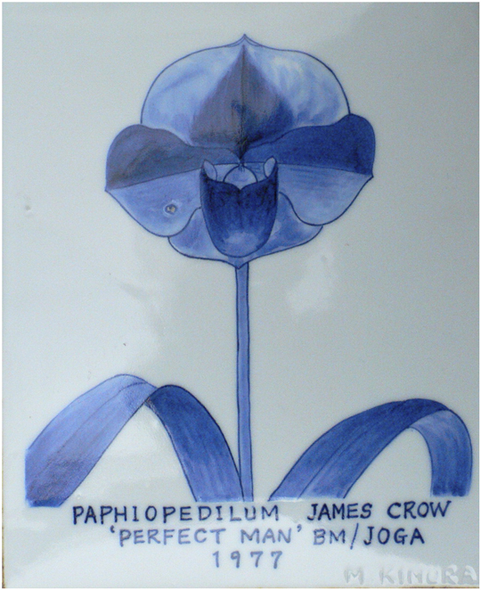 Prize-winning orchid bred by Motoo Kimura and named in honor of James Crow. The photo shows a tile painted by Kimura and given to Crow as a gift. From Susman and Greenberg Temin 2012