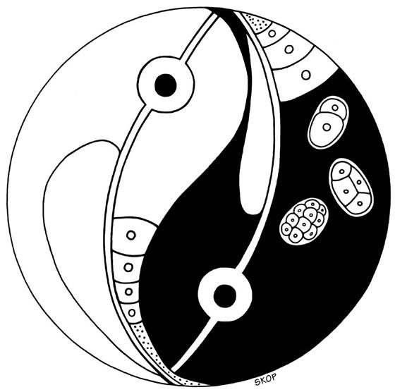 Logo for the 1997 C. elegans Meeting