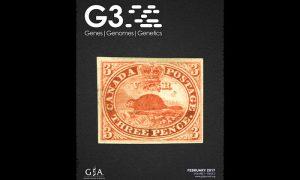 3 pence beaver stamp