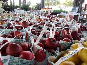 """The DGRP lines were collected at the State Farmer's Market in Raleigh, NC. <a href=""""https://www.flickr.com/photos/kelandval/3966281489""""Photo by Kel and Val via Flickr.</a>"""