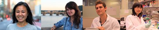 Sarah Deng, Stephanie Lauer, Andres Mansisidor, Danni Wang.