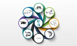 TAGC community logos