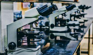 microscopes in lab
