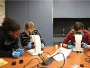 Students looking into microscope